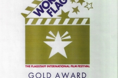 WorldFest-Gold-Award-Party-On-Houston